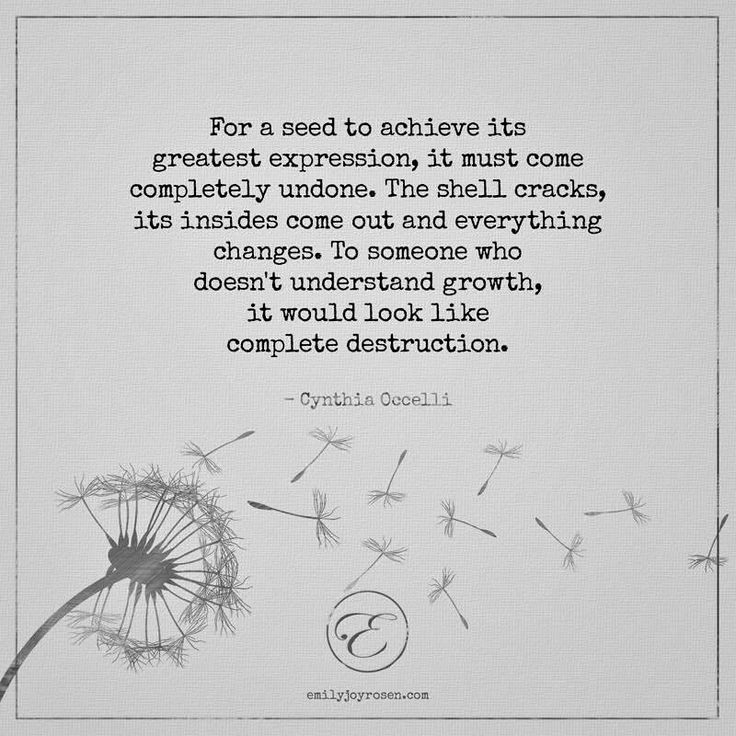 Dandelion-Quotes-And-Sayings-4