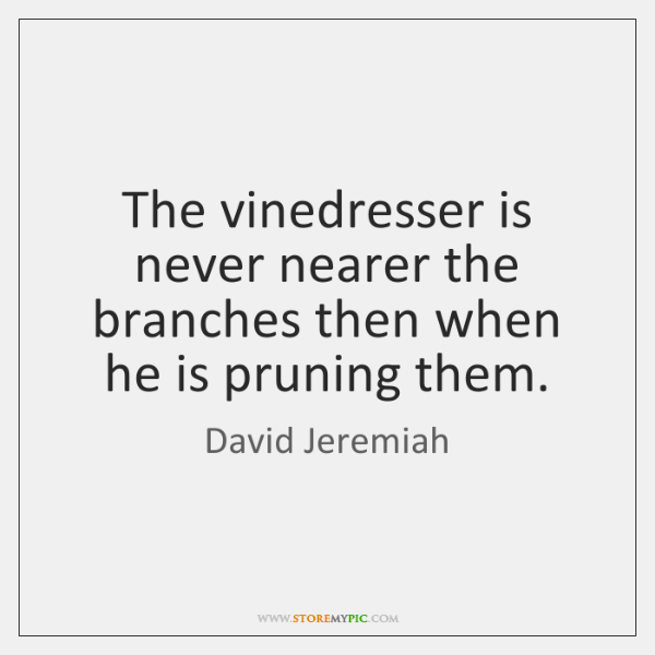 david-jeremiah-the-vinedresser-is-never-nearer-the-branches-quote-on-storemypic-bb5b4