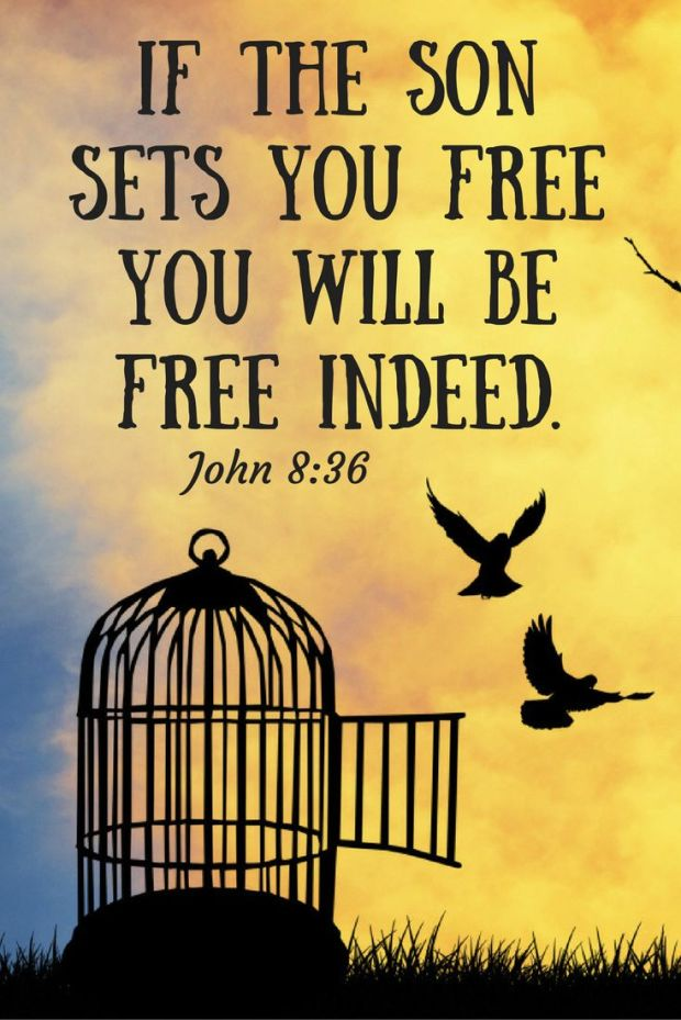 John-8-36-bible-verse-about-being-set-free-by-the-Lord-Jesus-Christ-Image-Images-Scripture-Bible-Passage